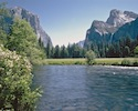 Tour allo Yosemite National Park
